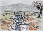 Honister Pass Area [ Just before reaching the pass from the east. Its the most atmospheric scenery. Pen and Ink, pencil and wash. ]